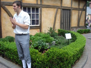 Tour Guide Discusses Camellia Sinensis
