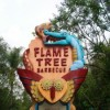Flame Tree Barbecue: The Circle of Life