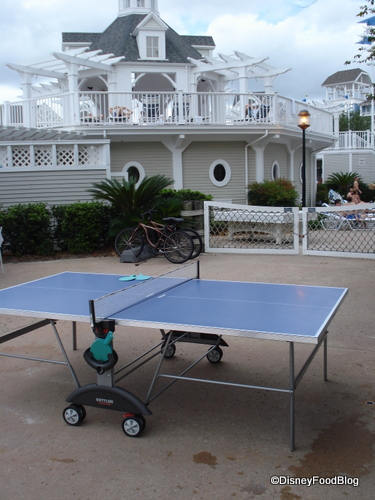 Stormalong Bay Ping Pong Table
