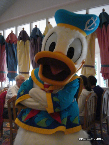 Silly Donald! You Don't NEED A Swimsuit!