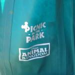 Animal Kingdom Picnic in the Park Review