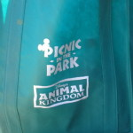 Animal Kingdom Picnic in the Park Review