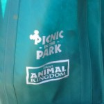 Updates to Animal Kingdom Picnic in the Park
