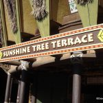 """""""Is This Place Ever Open?"""": Sunshine Tree Terrace"""
