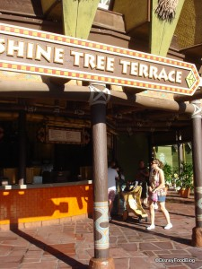 Sunshine Tree Terrace in the Magic Kingdom