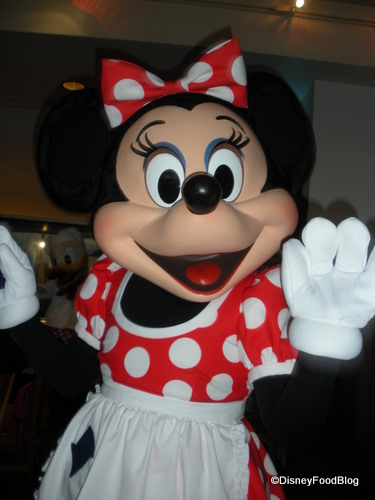 There are several ways to meet Disney characters... and it's best to know were before you go!