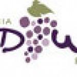 2011 Disneyland and Disney World Food and Wine Festival Dates