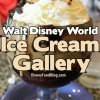 Disney Ice Cream Gallery