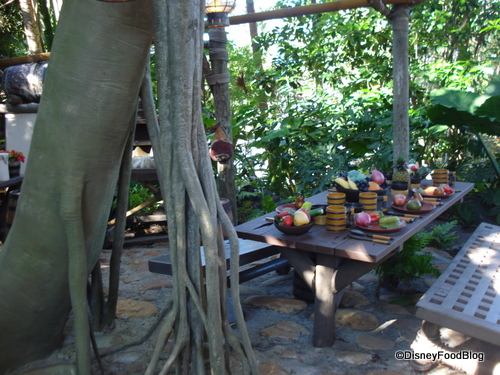 A Peek In The Kitchen Swiss Family Robinson Treehouse