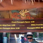 Tiki Juice Bar in Disneyland -- Menu