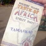Taste of Africa Street Party Photo Tour
