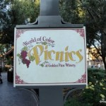 Disneyland's World of Color Picnic Review: The All American Picnic