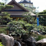 News! Epcot's Katsura Grill Grand Opening and Menu Announced