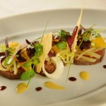 Disney Dream Recipe: Smoked Bison from Remy
