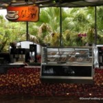 A Hot Spot for Great Coffee in Disney World: A Tip From the DFB Guide