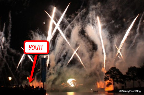 IllumiNations: Reflections of Earth -- And Your View from Snack Attack!