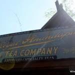 Hidden Gem: Animal Kingdom's Royal Anandapur Tea Company