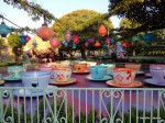 The Empty Teacups Looked So Pretty