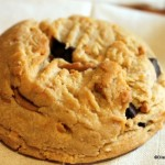 Snack Series: Selma's Chocolate Chip Peanut Butter Cookie