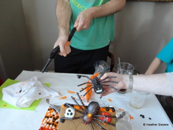 Adding our spiders.