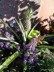 I loved the pineapple floral displays around the Food & Wine Event Center