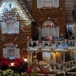 2011 Gingerbread Displays at the Grand Floridian and Contemporary Resorts