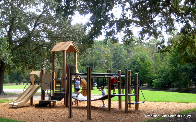 Guest Review Meadow Snack Bar At Fort Wilderness Resort