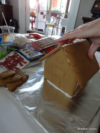 Step 7: The House is Built