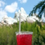 Pomegranate Martini at Disney's Animal Kingdom
