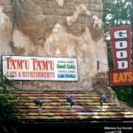 Guest Review: Tamu Tamu Refreshments in Disney's Animal Kingdom