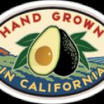 News! Downtown Disney Anaheim Celebrates Avocado Week