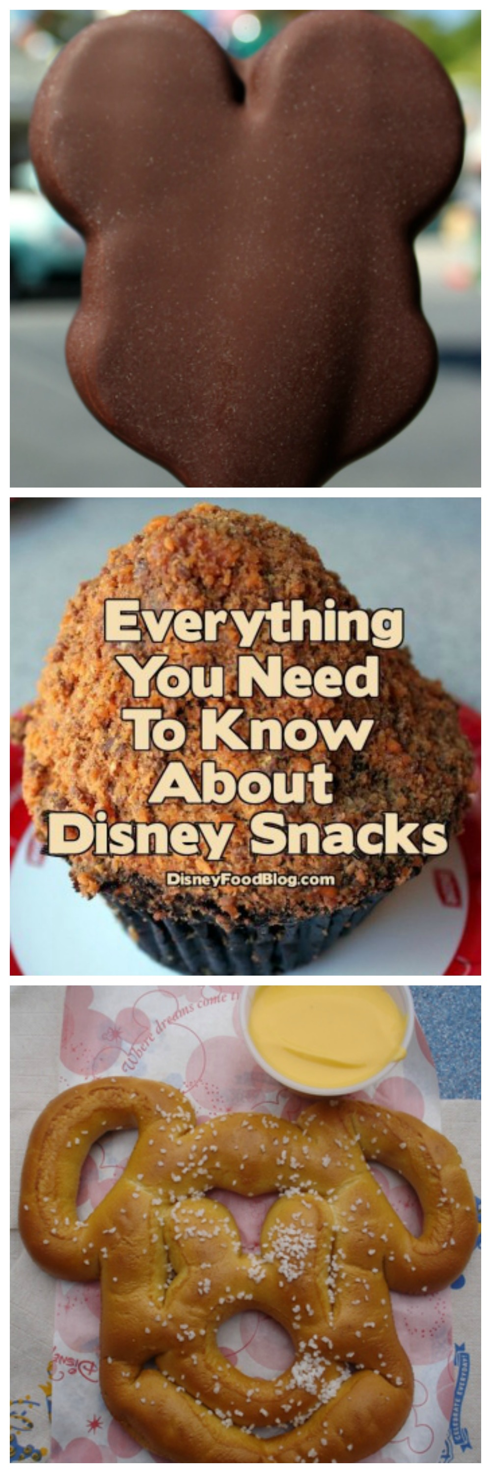 Disney Food Tips -  Everything You Need to Know About Disney Snacks