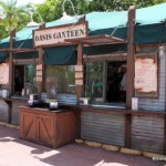 Snack Series: Oasis Canteen at Disney's Hollywood Studios