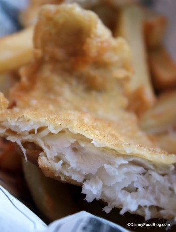 Fish and Chips - Cross Section