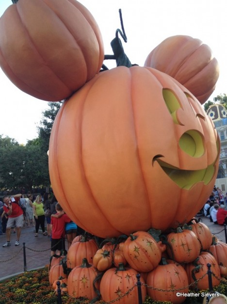 Big Mickey Pumpkin