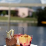 Best of the Fest: NEW Items at the 2012 Epcot Food & Wine Festival Booths