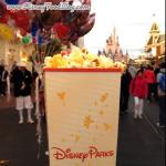 Disney Popcorn Gallery