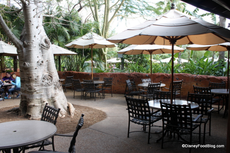 outdoor seating near me Zebra Domes | the disney food blog outdoor seating near me