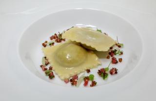 Egg Yolk Anolini