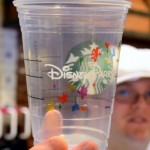 Disney Food Post Round-Up: June 16, 2013