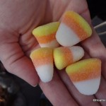 Dining in Disneyland: Gummi Candy Corn