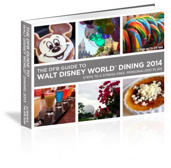 dfb guide 2014