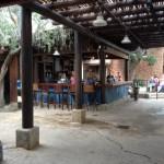 Review: Animal Kingdom's Newly Renovated Dawa Bar