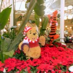Guest Review: Crystal Palace Breakfast in the Magic Kingdom
