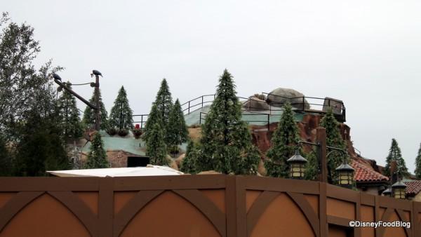 Pine trees at Seven Dwarfs Mine Train