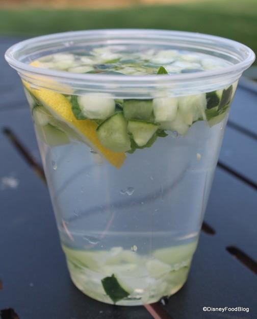 Cucumber Lemon Spa Water