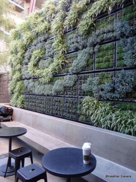 Living Wall with Patio Seating