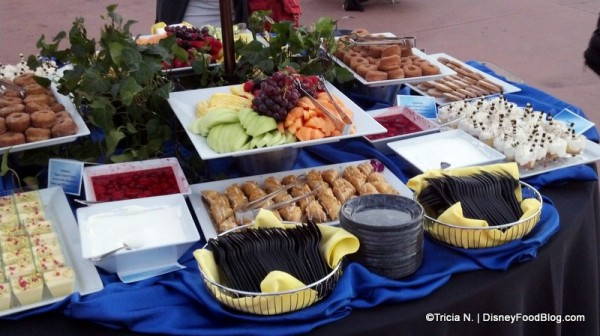 Epcot Sparkling Illuminations Dessert Party