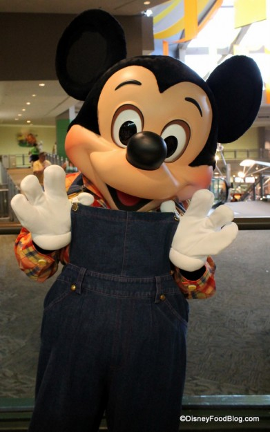 Farmer Mickey