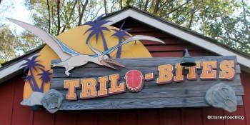 Trilo-Bites-DinoLand-Animal-Kingdom-1